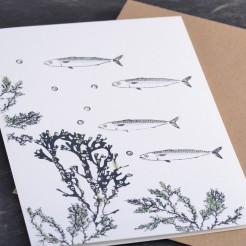 Karte-Makrelen