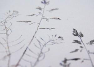winterkarte-detail