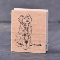 stempel-hund