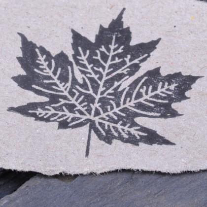 Ahornblatt Stempelabdruck