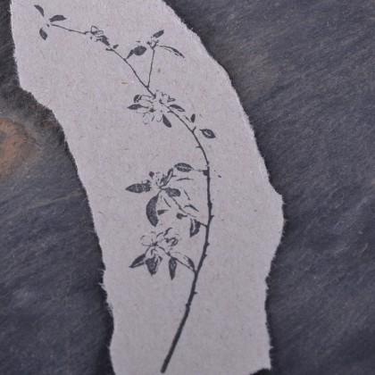Stempelabdruck Kirschblütenzweig