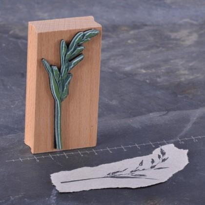 Rueckseite-Rispengras