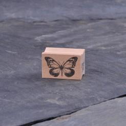 Schmetterling-mittel