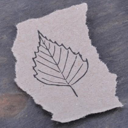 Stempelabdruck-Birkenblatt-Kontur