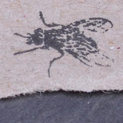 Stempelabdruck-Fliege