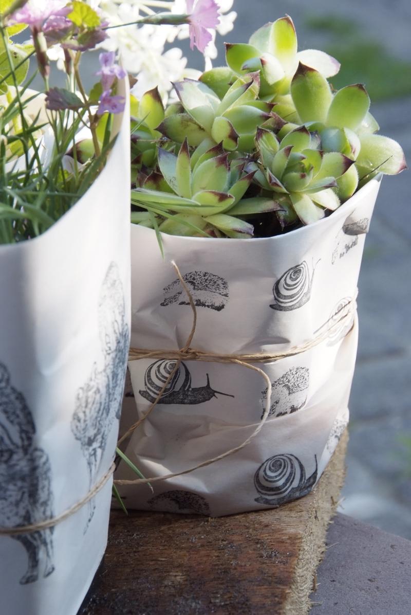 Geschenkverpackung Für Pflanzen Stempel Jazz