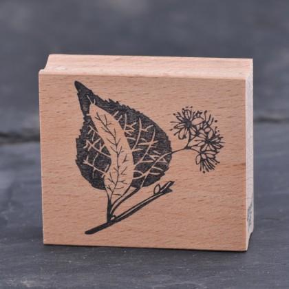 Stempel-Lindenbluete