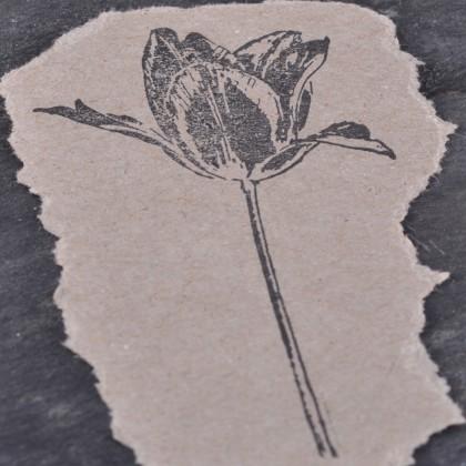 Stempelabdruck-Tulpe