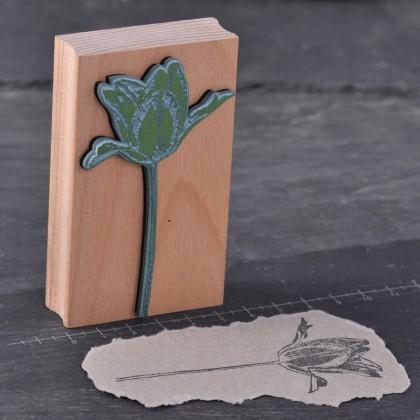 Stempelgummi-Tulpe