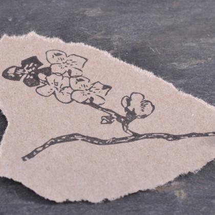 Stempelabdruck-Kirschbluetenset