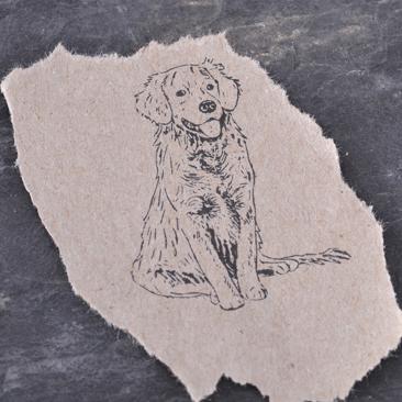 stempelabdruck-hund