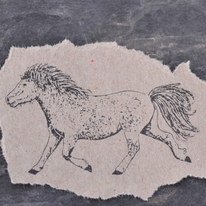 stempelabdruck-pony