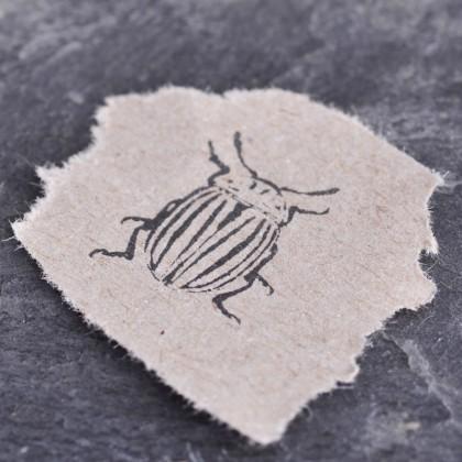 Stempelabdruck-Kartoffelkaefer