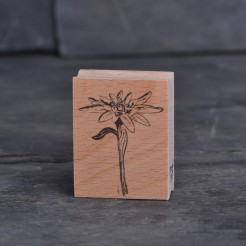Stempel-Edelweiss