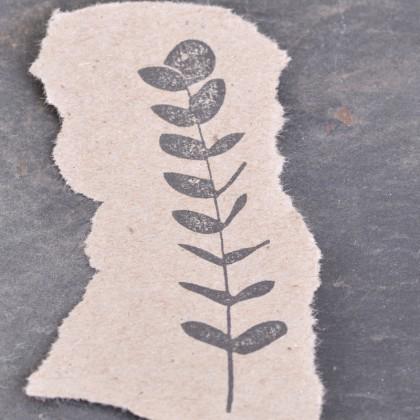 Stempelabdruck-Eukalyptus-II